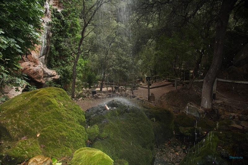 Майорка. La Reserva de  Puig de Galatzo.