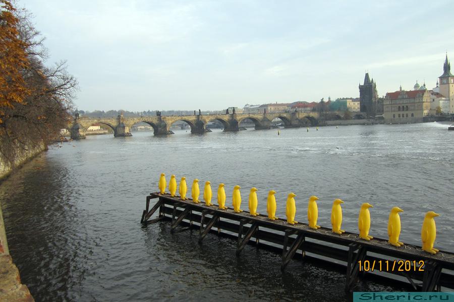 Прага. Пингвины