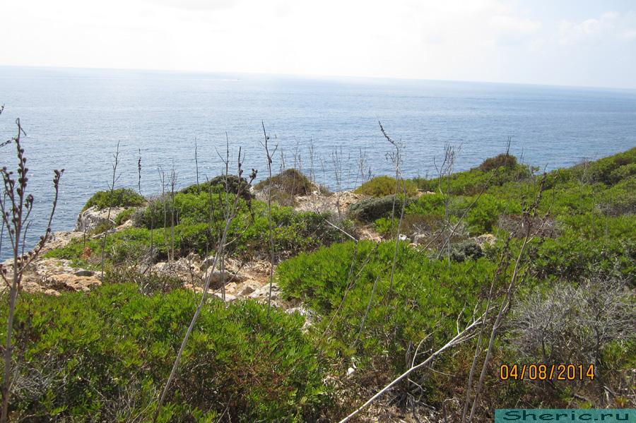 дикий поход от пляжа s'Estany d'en Mas
