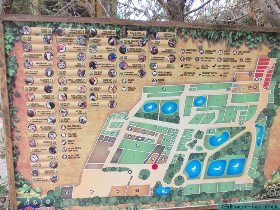 Майорка. Zoo natura Parc.
